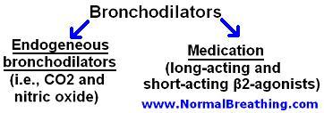Bronchodilators chart