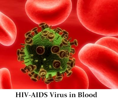 HIV-AIDS virus in blood