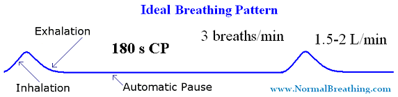 Ideal yogi breathing pattern, frequency of 3 breaths per minute