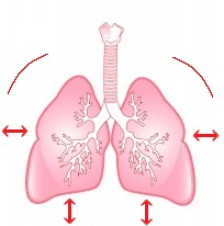 Lungs: Overbreathing Causes HIV-AIDS
