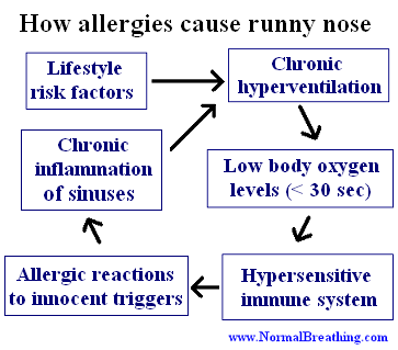 How allergies cause runny nose
