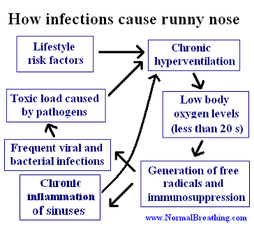How infections cause runny nose