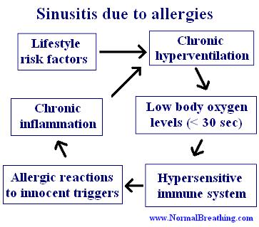 Sinusitis causes: allergies