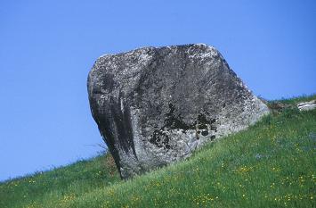 Stone in field