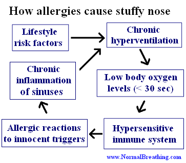 How allergies cause stuffy nose