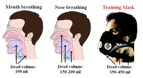 Training mask compared with other breathing methods