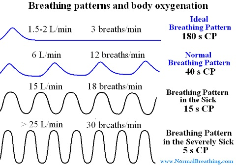 4 Types of breathing patterns